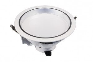 20w LED Downlight With A White Rim And Opal Diffuser